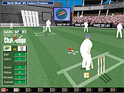 Playing Cricket Challenge