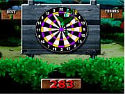Playing 301 Darts