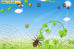 Playing Spider Hunt